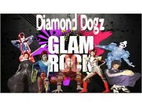 Diamond Dogz tribute th Glam Rock