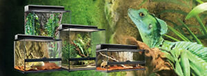 Reptiles, Snakes, Lizards and Feeders Cambridge Kitchener Area image 8