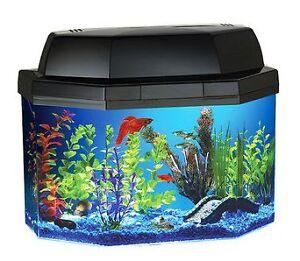 5 gallon fish tank aquarium kit hood light filter amp for Fish tank hoods