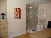 Double room with shower, basin, toilet, mini kitchen, WIFI 100Mb, bills inclusive, Swindon centre