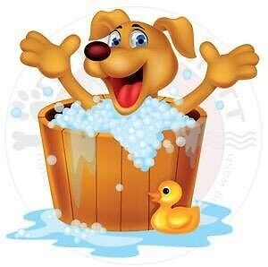 $10 Doggie Hydrobaths: Sunday Only Victoria Point Redland Area Preview