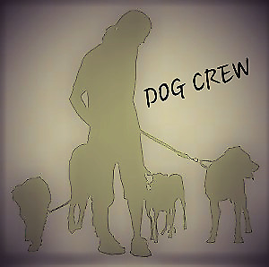 DOG CREW -Lakefield family dog walking for your busy pooch