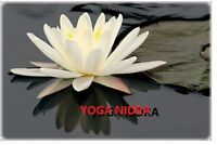 Yoga Nidra for Stress and Anxiety