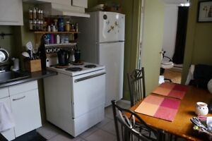 Big sunny 3 ½, 1 bd, renovated, Downtown, Old Montreal