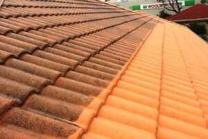 Bradley Edwards Exterior Roof Cleaning Singleton Rockingham Area Preview