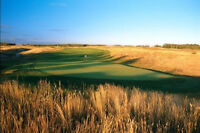 Incredible Deal - Large Lot- Wolf Creek Golf View w/Easy Commute