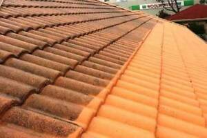Bradley Edwards Exterior Roof Cleaning Service Singleton Rockingham Area Preview