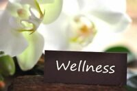 Home Business Opportunity in Health and Wellness