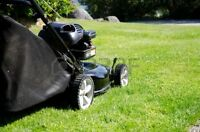 """Lawnmower  """"cash for some"""""""