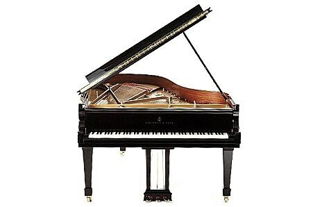 Piano and Violin Tuition in Hyndland