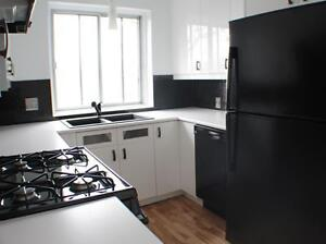 Large 1 bedroom 3½ | Dowtown | RENOVATED| Pet Friendly