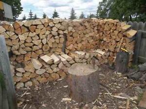 "Pine & Spruce firewood, cut in 16"" lengths, spilt and seasoned"