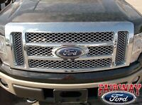 CL3Z-8200-BB 2009-13 FORD GRILLE INSERT