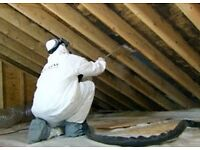 Pest Control / Wood Treatment - Woodworm, Bed bugs and Fleas