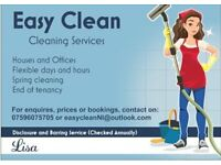 Easy Clean Domestic and Small Business Cleaner