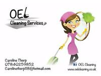 Domestic Cleaner/pick up drop off ironing service
