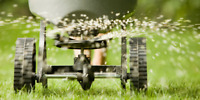 Fall Overseeding Services