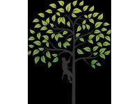 Newly Qualified Tree Surgeon