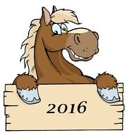 Horse Boarding in Bourget ***Coming Soon 2016