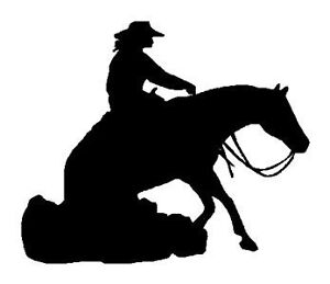 Reining Partner Wanted