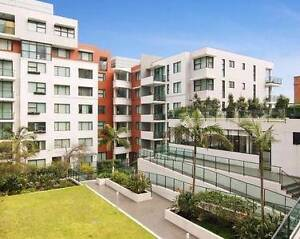 Single Room in Ultimo with enclosed balcony Ultimo Inner Sydney Preview