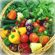 Vegetable Seeds Pack