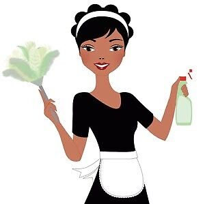 Domestic Cleaner to help you with everything!! Banksia Beach Caboolture Area Preview