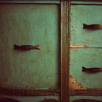 Wunkster's Closet