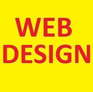 professional web design $399