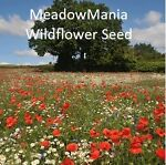 MeadowMania Wildflower Seeds