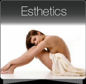 Become Certified in Aesthtics Stratford Kitchener Area image 1