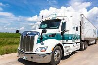 Class 1 or AZ  Drivers needed for a few opening now Team/ Solo