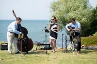 Parties, Christmas, weddings -Live Trio- All styles - See Video
