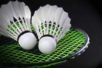 Badminton Lessons: Private & Semi-Private