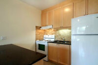 Renovated 1bdrm apt at Lakesore, Etobicoke