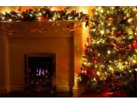 Help get ready for Christmas with a spruce up in your home. Lady cleaner housekeeper