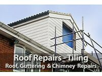 Roofing , roof repairs , storm damage