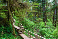 Visit Forest Trails, hiking, travel..... (vancouver, burnaby)