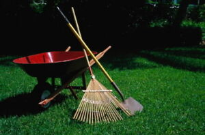 Yard cleanup, grass cutting, and winter prep