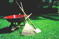Yard Work and Landscaping $15 hourly