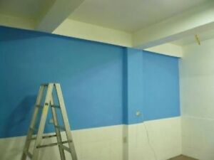 Professional paint good price and good job