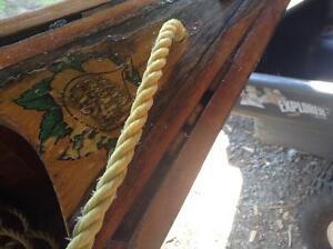 Chestnut Pal Canoe
