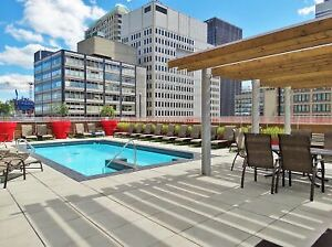 Sunny Downtown 2 1/2 condo for rent