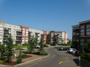 Wellington Court- GREAT INCENTIVES & 1 Bdrms start at $1100! Edmonton Edmonton Area image 11