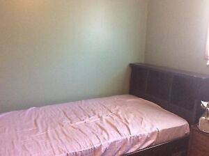 Single bed - solid wood frame with bookcase headboard - mattress Kitchener / Waterloo Kitchener Area image 1