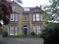 ***REDUCED*** 2 BED GROUND FLOOR APARTMENT IN ENDCLIFFE CRESCENT, BROOMHILL, S10