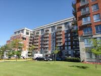 Spacious 3 Bedroom Suite, Great Amenities, DROP IN!