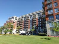 Beautiful 1 Bedroom Suite, GREAT AMENITIES!