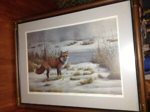 Gorgeous fox print by Marla Wilson for sale