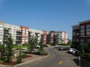 Great incentives &  2 Bedrooms start at $1245! Edmonton Edmonton Area image 14
